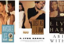 E. Lynn Harris Invisible Life Trilogy